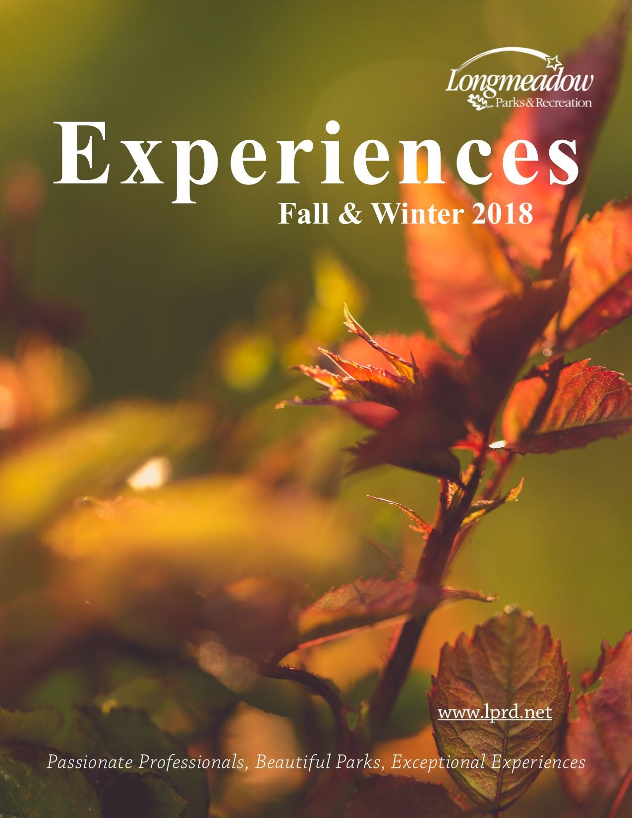 Fall and  Winter 2018 cover